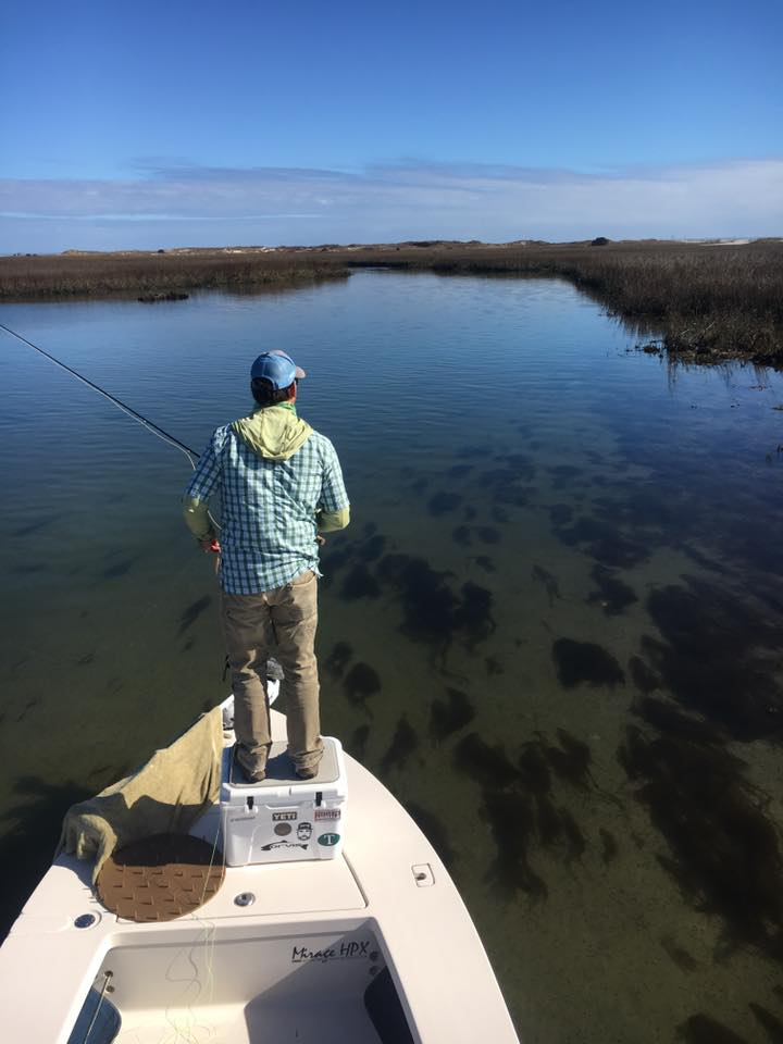 Winter Saltwater flats fishing Pawleys Island South Carolina.