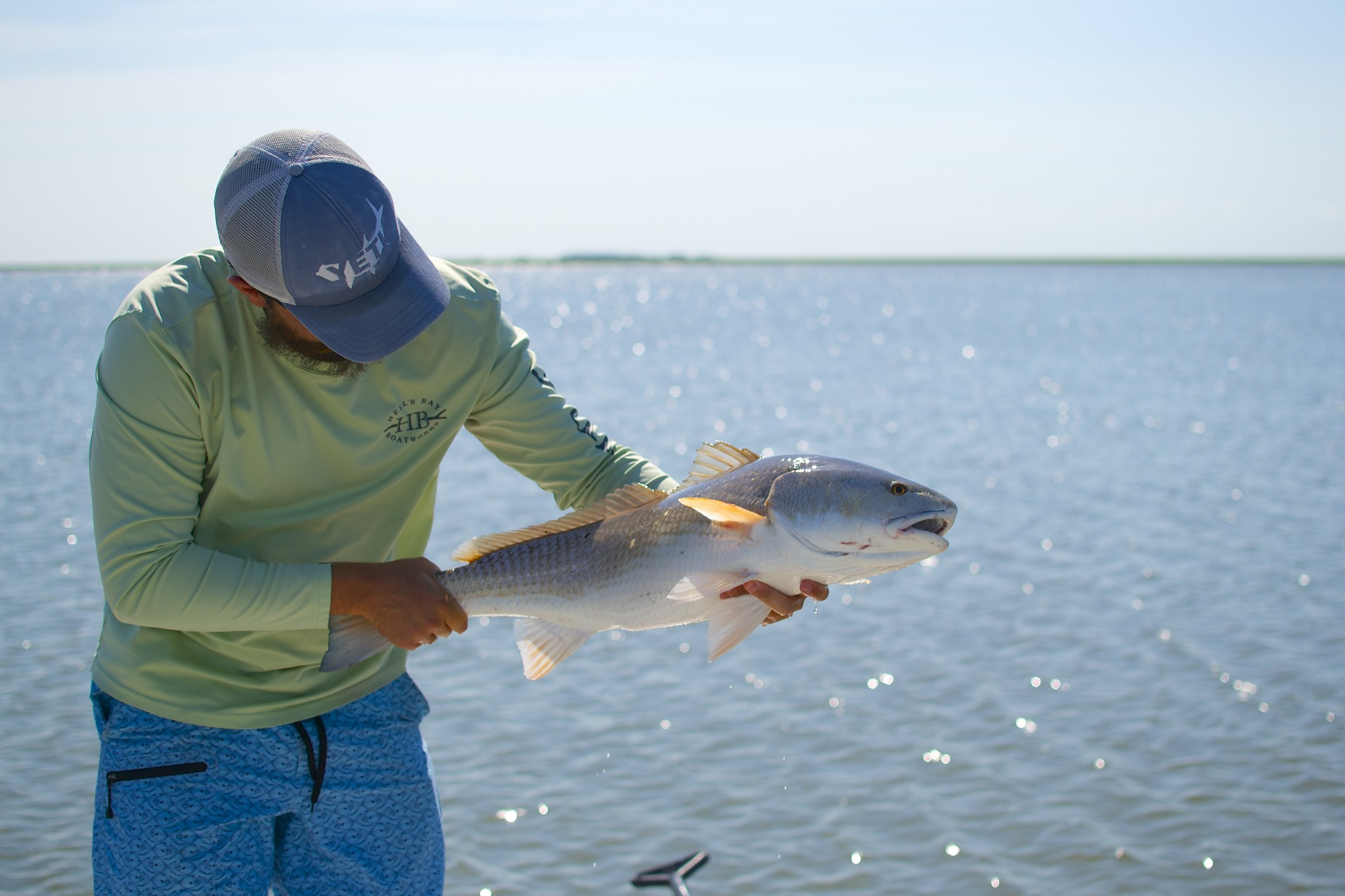 Summer Redfish in the Low Coutnry