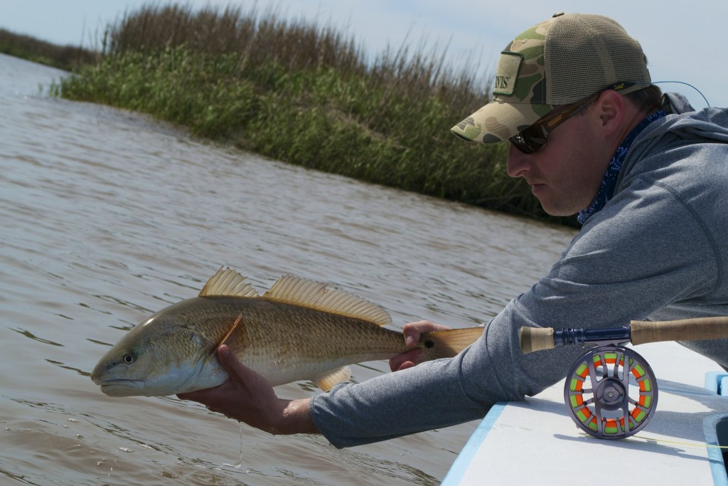 Fly fishig for redfish