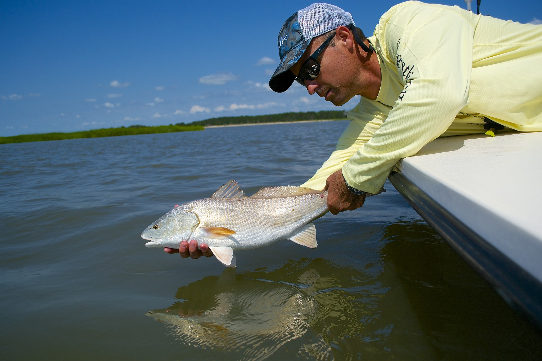 Angler releasing redfish back into the water