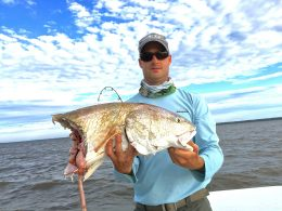Huge redfish eaten by a shark